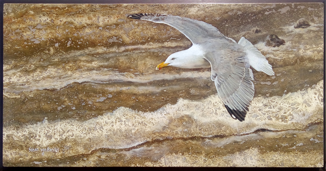 793 Gull and Waves web
