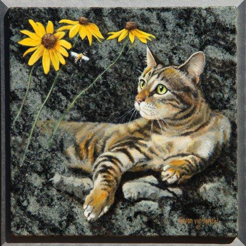 794 Cat Like 1